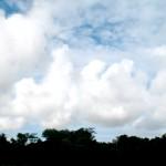 Skies 4 copy