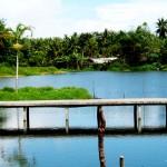 Bangka View 2